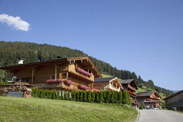 Bauernhäuser in den Alpen