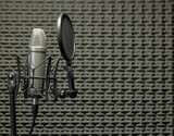 Microphone in Acoustic Booth