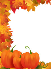pumpkins with fall leaves background