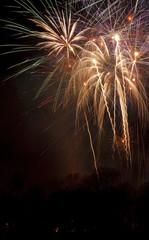Fireworks Carlisle 2010