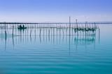 Albufera Valencia lake wetlands mediterranean poster