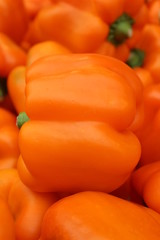 Orange peppers on display at the market
