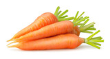 Isolated carrots. Heap of fresh carrots with stems isolated on white background