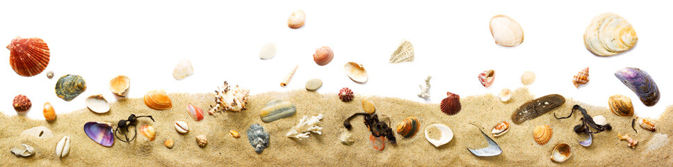 Sand und Muscheln Dekoration