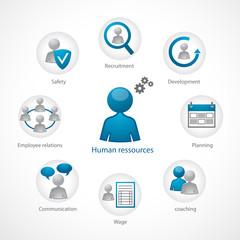 human ressources
