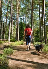 Waldwanderung mit Hund