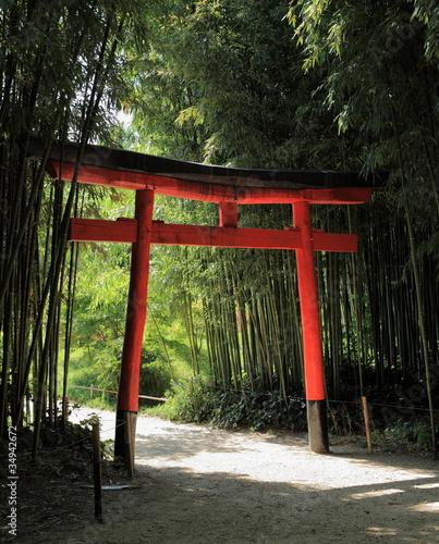 torii et forêt de bambous|34942672