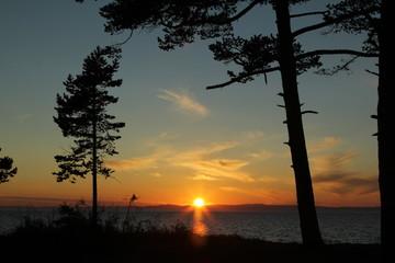 Закат на озере Байкал сквозь деревья.