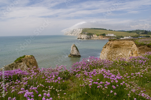 canvas print picture Freshwater bay auf der Isle of Wight