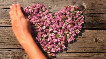 Serce ułożone z kwiatów