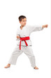 Full length portrait of a karate child exercise
