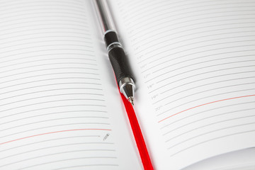 The open daily log with a bookmark and the pen