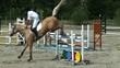 saut d'obstacles 1.6