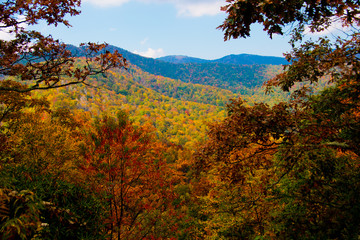 autumn in the blue ridge mountains