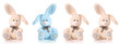 Four cute rabbits isolated on white background