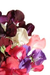 wet sweet pea bouquet