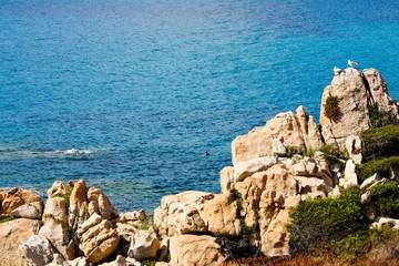 Bord de mer (vers Sagone, Corse)