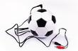 Fussballübertragung