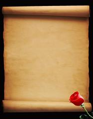 Foglio di pergamena con rosa rossa su fondo nero