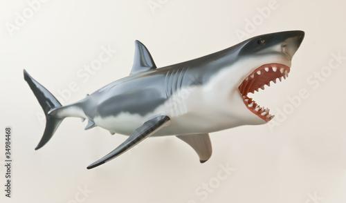 A Great White Shark Model Against White