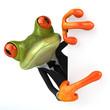 Leinwanddruck Bild Business frog