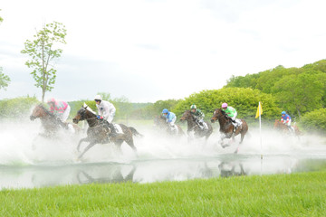 Horse Race with Splashing Water