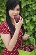Hispanic woman holding basket of apples