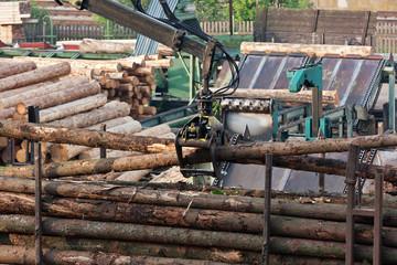 Loading of logs on transport