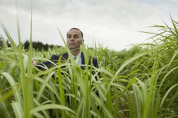 Asian businessman standing in tall grass