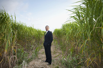 Asian businessman standing in field