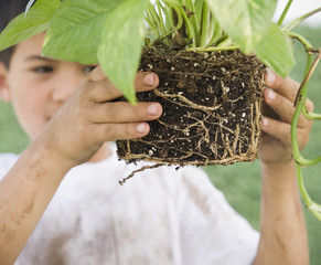 Mixed race boy holding garden plant