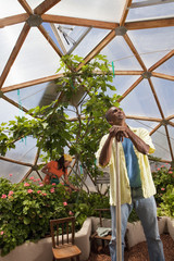 Hispanic man looking up in greenhouse