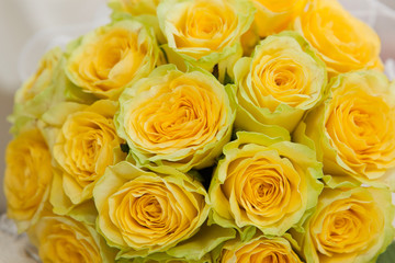 Bouquet from yellow roses close up.
