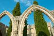 Bellapais Abbey stone arcs