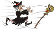 chasing witch broomstick