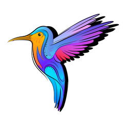 Vector Hummingbird design