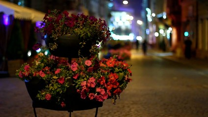 Beautiful flower bed on walking street