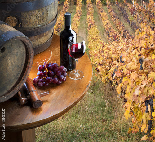 red wine with barrel on vineyard