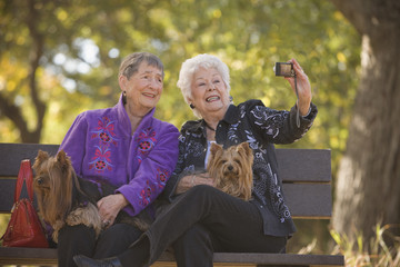 Senior women sitting on park bench with dogs taking self-portrait
