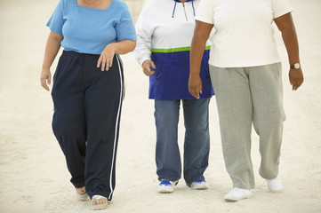 Overweight friends walking together