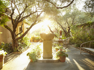 Sunflare coming through outdoor patio area in nature with fountain in foreground