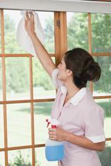 Hispanic maid cleaning windows