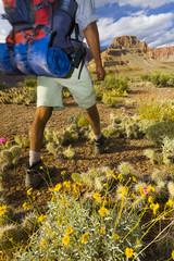 Black man hiking in canyon area