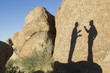 Shadow of businessmen talking in desert