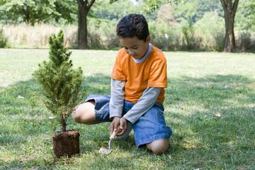 Hispanic boy planting tree