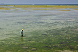 Fisherman standing in shallow sea