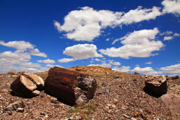 Blue sky over petrified tree trunk