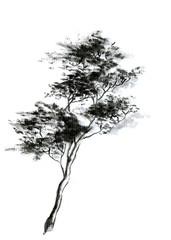 Sumie tree