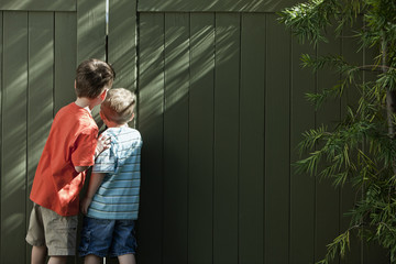 Caucasian brothers peering out fence