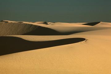Sunshine on desert sand dune